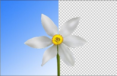 Remove background  from any 10 Images