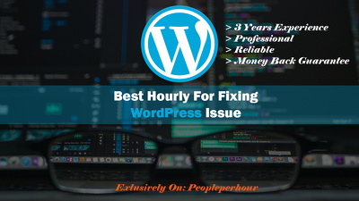 Fix 2 wordpress issue,bug,problem