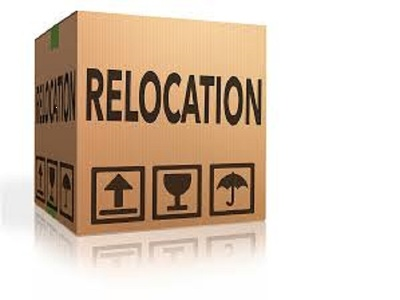 Provide 1 hour relocation consultation for Bulgaria