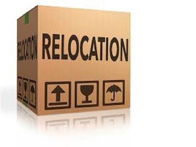 Provide 1 hour relocation consultation for Bulgaria