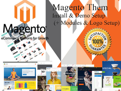 Magento Theme Install & Demo Setup (+ Modules & Logo Setup)