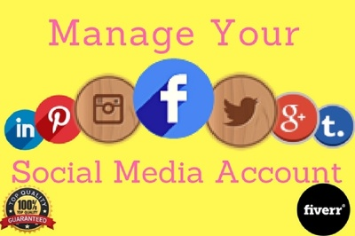 Be your professional social media manager and cerate account