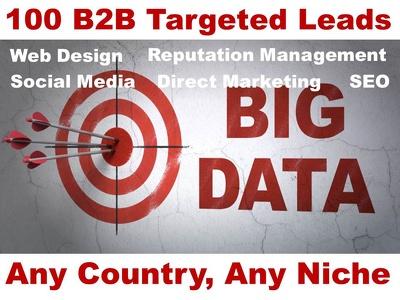 100 SEO Leads B2B Targeted Fresh UK USA CANADA Any Niche