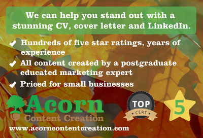 Help you stand out with a stunning CV, cover letter and LinkedIn