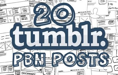Do 20 manual high quality Tumblr PBN blog posts SEO backlinks