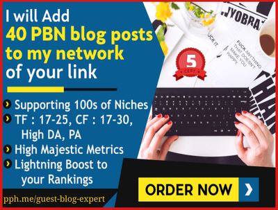 Build 40 Permanent PBN Backlinks to Boost Your Google Rankings