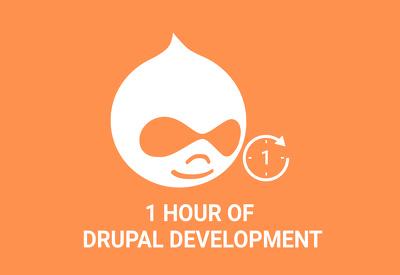 Do 1 Hour of Drupal Development