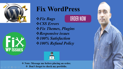 Fix Your Wordpress Issue Within 24 Hours