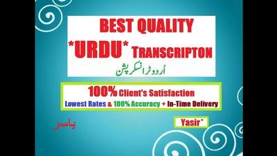 Do any type of Urdu English Data entry