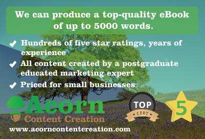 We can produce a top-quality eBook of up to 5000 words.