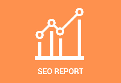 Give You A Full SEO Report