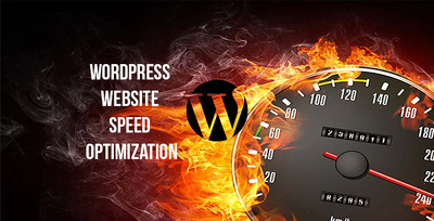 Optimise the speed and performance of your WordPress website