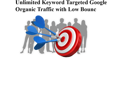 Unlimited Keyword Targeted Google Organic Traffic with Low Bounc
