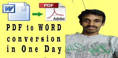 Convert PDF doc to Word