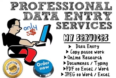 Do data entry work/ Web Research/ virtual assistance in 24 hours