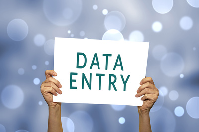 Assist you with data entry work in 1 hour