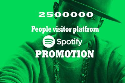 Do best spotify promotion