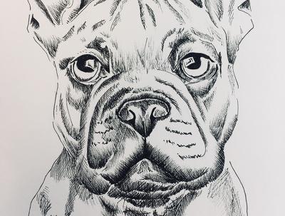 Hand draw pet protraits