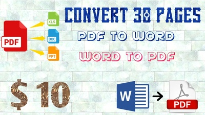 Convert 30 PAGES pdf to word or word to pdf