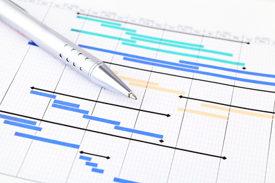 create a project plan for your project or new business proposal.