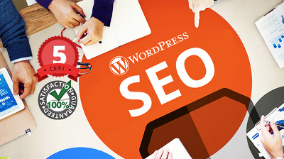 Perfectly Optimised On Page SEO Of Your WordPress Website