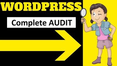 Professionally audit your WordPress Website