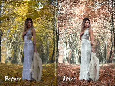 Color correct 10 images in Lightroom