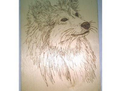 Make a special Pyrography Panel (20 x 30 cm)