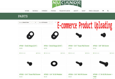 Upload/import 100 products into e-commerce site in 24 hours