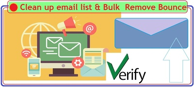 Bulk verify and clean up large Email list of up to 10,000 emails
