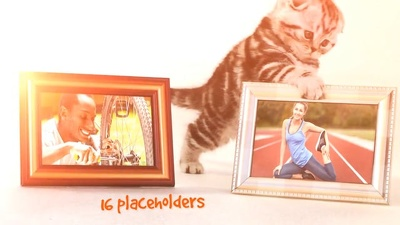 Make This Funny Cats Promo Video For Your Company