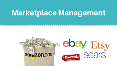 Setup a store with Amazon, Ebay, Etsy, Shopify, any Ecommerce