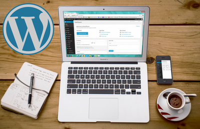 Assist with your wordpress site