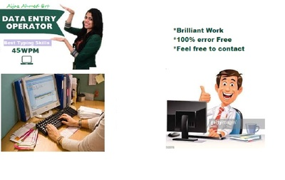 Provide 1 hour of professional data entry