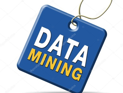 Expert web scraping / data mining / data extraction service