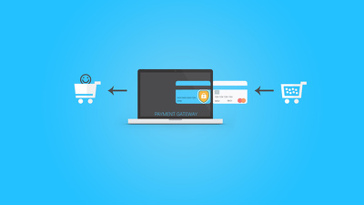 Integrate any payment gateway to your website