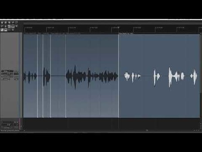 Remove mistakes, cut breaths and set pauses in you audio