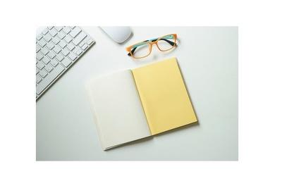 Publish a guest post on Insurers - Basic InsurersBasic.com  DA52