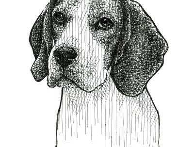 Draw realistic portrait of your pet