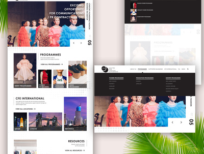 Design Bespoke Homepage Design in 24-48 hour!