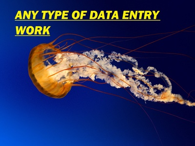 DO ANY TYPE OF DATA ENTRY WORK FOR 3 HOUE