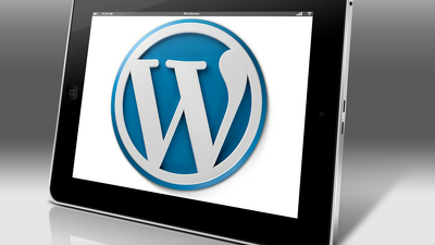 Install/setup WordPress & install/customize your Theme