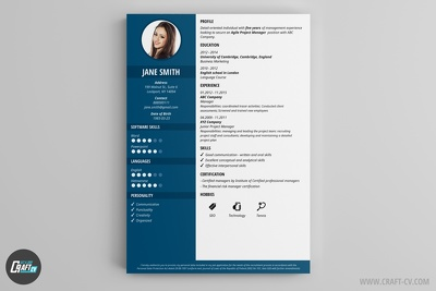 Make or edit a beautiful CV or Resume for you.