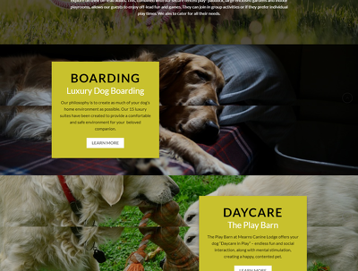Design a Stunning WordPress Responsive 6 to 8 Pages Website