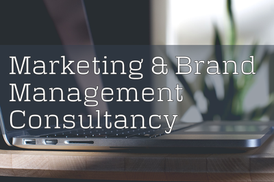 Marketing and Brand Management Consultancy giving input to you