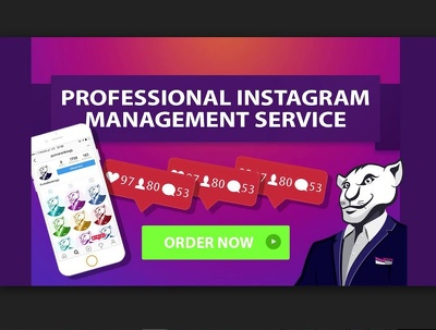 Be your  Professional Instagram Manager