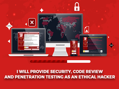 Provide Security, Code Review, remove malware and Trojan
