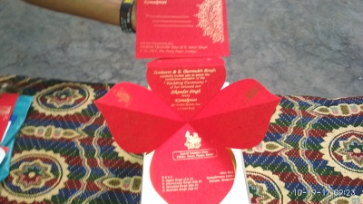Design your business Cards, Catalouge &Wedding Cards