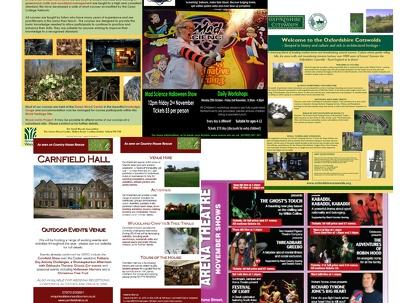 Design a flyer, leaflet or poster