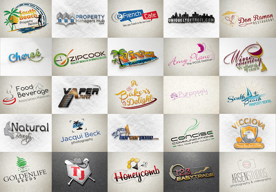Design 2 professional logo concepts for your business